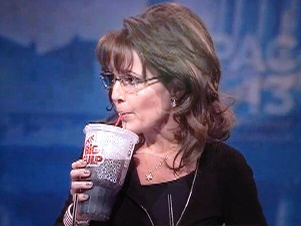 palin_big_gulp